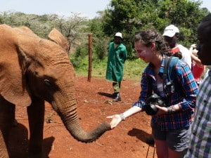 Emily visiting with an orphaned elephant at the David Sheldrick Wildlife Trust while studying spotted hyena behavior in Kenya last year.